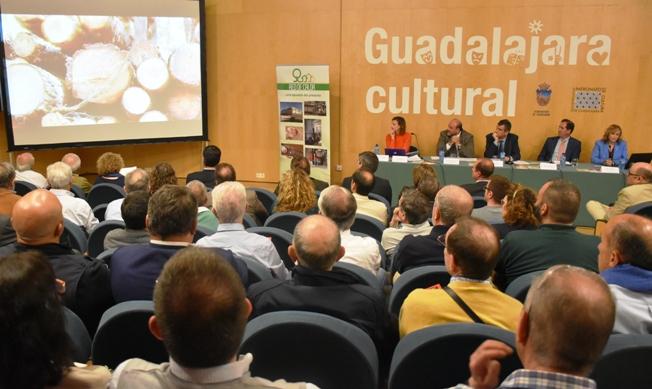 Acto de presentación del proyecto de Red de calor en Guadalajara